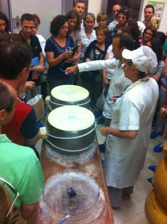 Food Valley Travel & Leisure: Parmigiano-Reggiano making