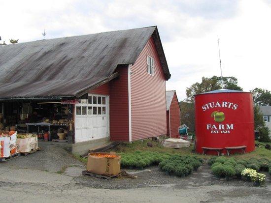 Stuart's Farm