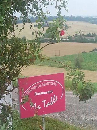 Ma table: Suivez les panneaux roses...