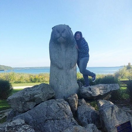 ‪Wiarton Willie Statue‬