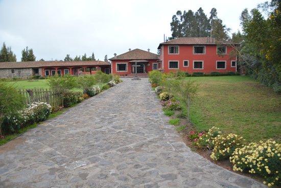 Hacienda Hato Verde: Driveway to Hacienda