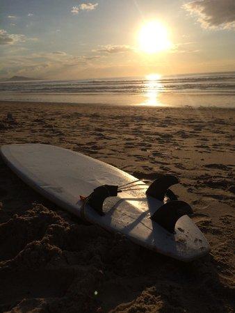 Surf Hostel Bed & Breakfast : Cote de Basque