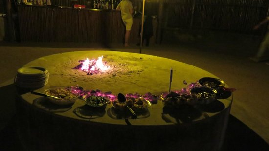 Pezulu Tree House Game Lodge: dinner by the fire