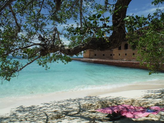 Seaplane Picture Of Dry Tortugas National Park Key West Tripadvisor