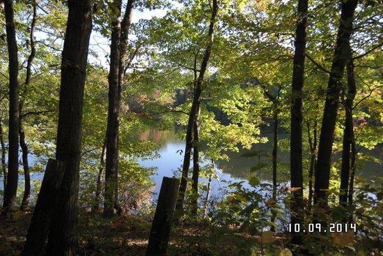 Staten Island, NY: Orbach Lake Oct. 10, 2014