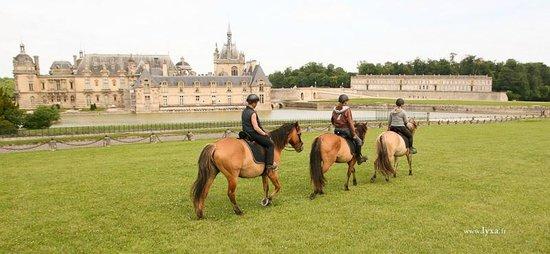 centre equestre henson
