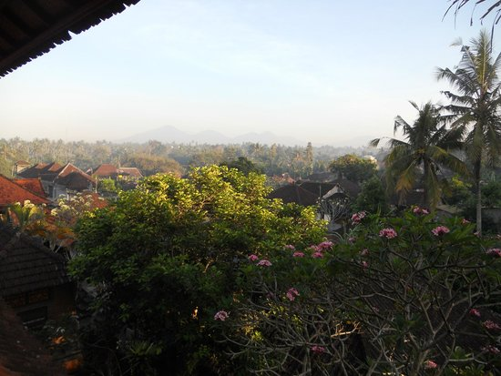 Ketut's Place: View from terrace