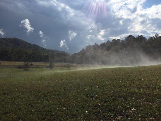 Blackberry Farm: The horse pasture