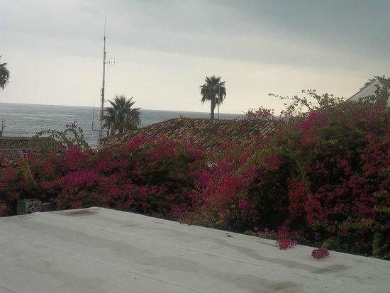 Palia La Roca Hotel-Club : vue depuis la salle d'animation