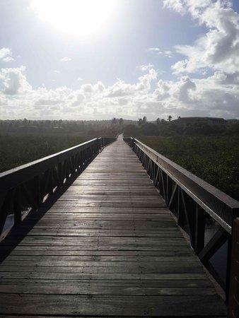 Grand Palladium Imbassai Resort & Spa: Puente que une el hotel con la playa