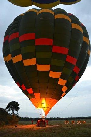 Fig Tree Camp : Balooning......