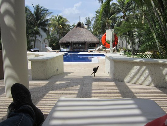 Laguna Suites Golf & Spa: The pool, the restaurant from my point of view in the lobby