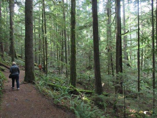 Nanaimo, Canadá: Trails