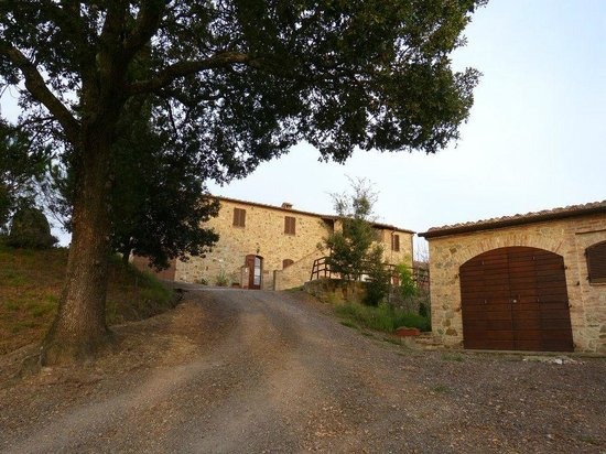Agriturismo Collesassi
