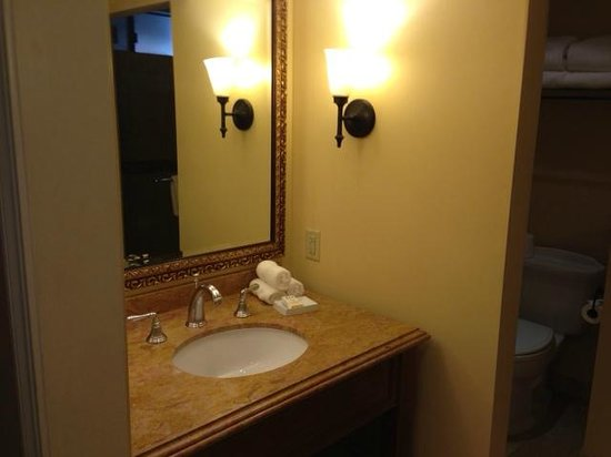 Napa Valley Lodge: Sink