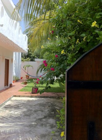 Welcome to B&B Casa Coral