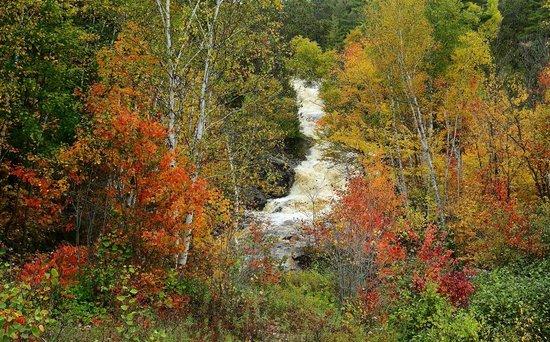 Duchesnay Falls Trails