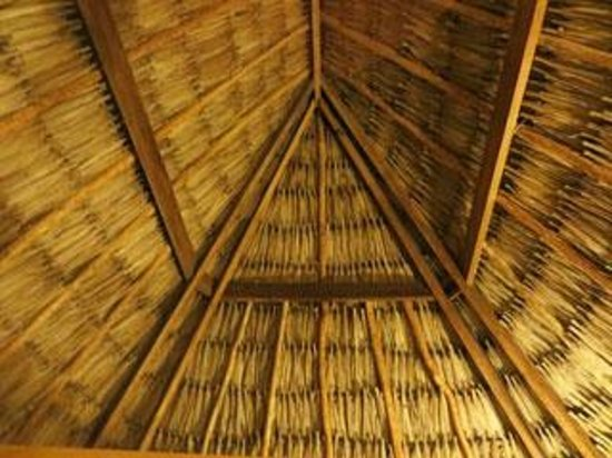 Hotel del Rio: LOVED the thatch roof!