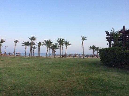 فندق انتركونتننتال غالب: beach