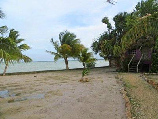 The Inn at Corozal Bay: right on the beach