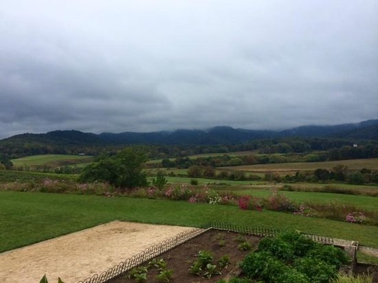 Pippin Hill Farm & Vineyards : View