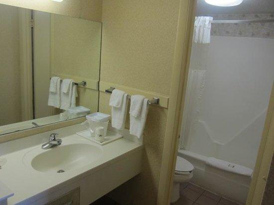 Howard Johnson Inn Virginia Beach: Bathroom area