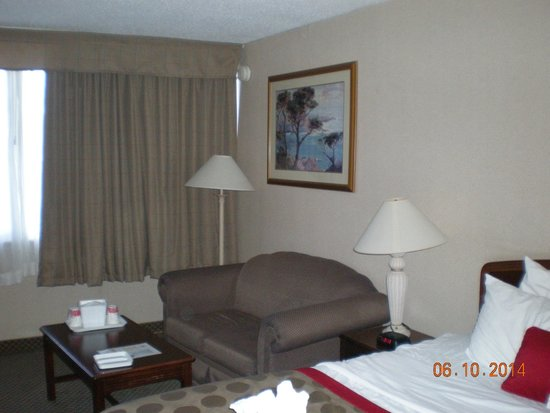 Ramada Cortland Hotel and Conference Center: lots of room sofa and table