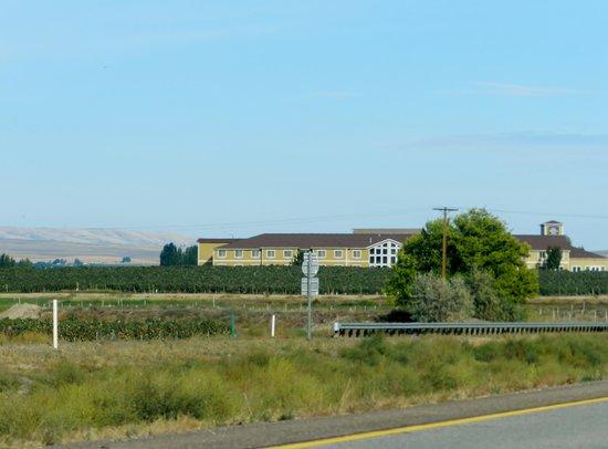 Best Western Plus Grapevine Inn : Easy access off Highway set amongst Vineyards