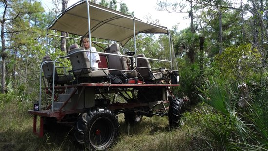 Captain Steve's Swamp Buggy Adventures: Taking a break.