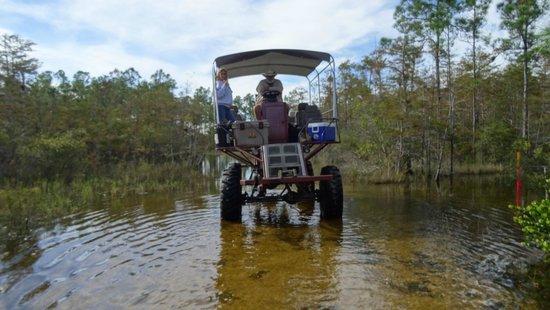 Captain Steve's Swamp Buggy Adventures: Captan Steve at the helm.