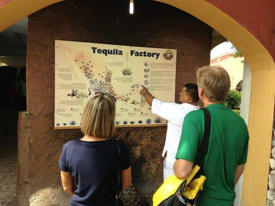 Free Tequila Tour By Casa Mission: Tequila factory