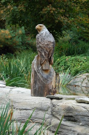 Maine Wildlife Park: Wooden sculpture of an eagle
