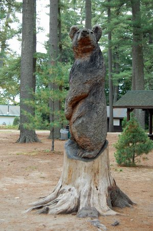 "Maine Wildlife Park: Stump sculture ""bear"""
