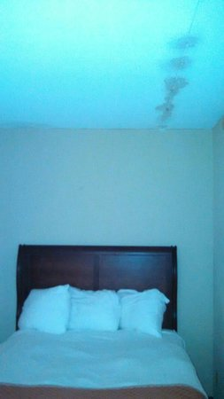 Sturbridge Host Hotel & Conference Center: Major leak stains on ceiling!