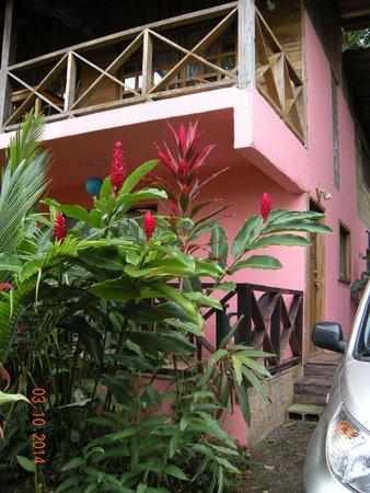 Coconut Love Beach House : Entrance
