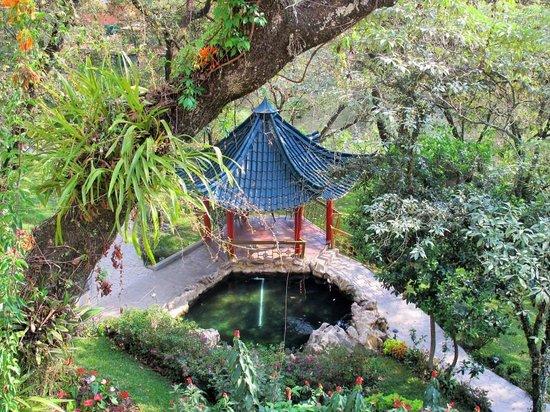 Suites Jardín Imperial: Jardin Imperial