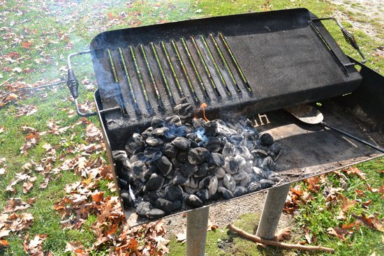 Laurel Hill State Park: Lakeview - Grill