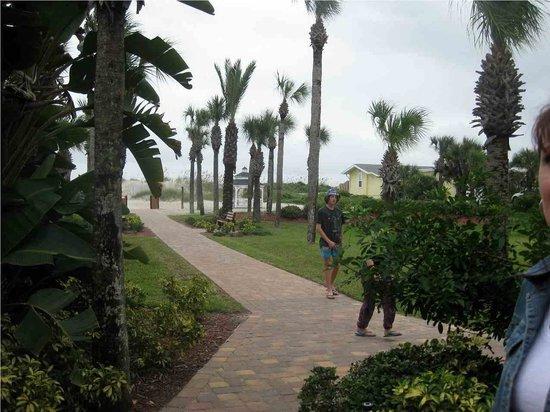 Hampton Inn St. Augustine Beach: path from the hotel to the beach