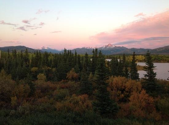 Fall Colors at Denali Lakeview Inn