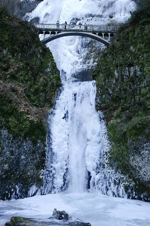 Bridal Veil, OR: A frozen Multnomah Falls