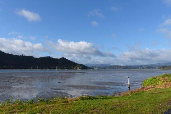 Mercury Bay at low tide