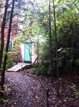 Cedar House Inn & Yurts : Yurt