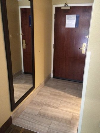 Hampton Inn Atlanta / Peachtree Corners / Norcross : Entryway