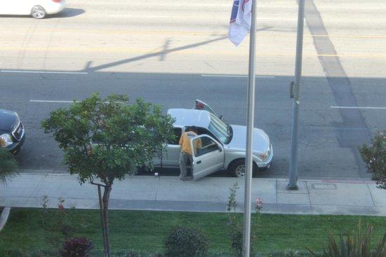 Hampton Inn & Suites Los Angeles/Sherman Oaks: Street view