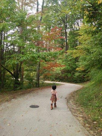 Matsumoto Alps Park : 10/12 アルプス公園さんぽ①