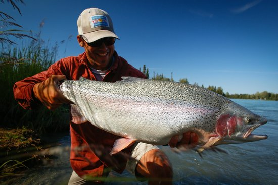 Кенай, Аляска: Giant Kenai River Rainbow Trout