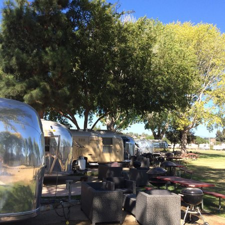 Flying Flags RV Resort & Campground : Airstreams under the trees