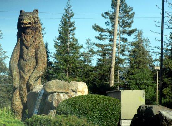 Best Western Inn - Rohnert Park, Ca
