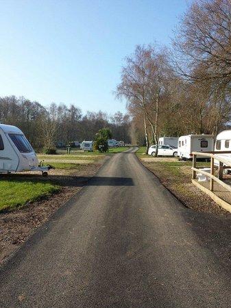 Green Hill Farm Camping & Caravan Park: Camping in wild haven