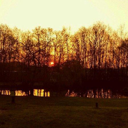 Green Hill Farm Camping & Caravan Park: Sun rise over wild haven